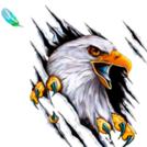 IceEagle5639