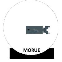 FormatAnimal-Morue-a.png.f206cfd83ea1afa954f1830fd7bf7035.png