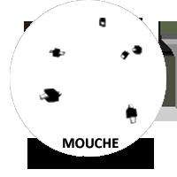 FormatAnimal-Mouches-a.png.61b5af4deefcb220b31708bce1cbbde1.png