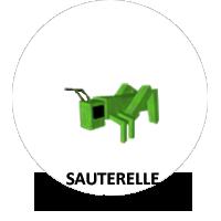 FormatAnimal-Sauterelle-a.png.cc8818232e0dc2dbbc4894bcf540f597.png
