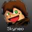 Skyneo